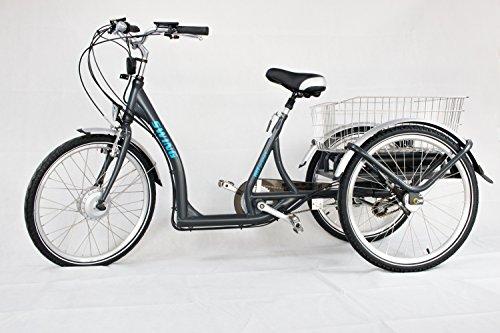WEE E-Bike Dreirad Swing Nexus 3 Trike Elektrodreirad E-Trike 24Zoll