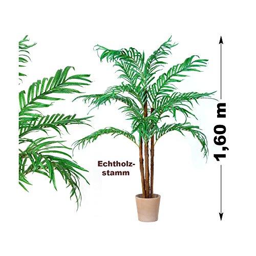 Kokospalme, Echtholzstamm, Kunstpalme, Kunstpflanze, Kunstbaum – 160cm - 4