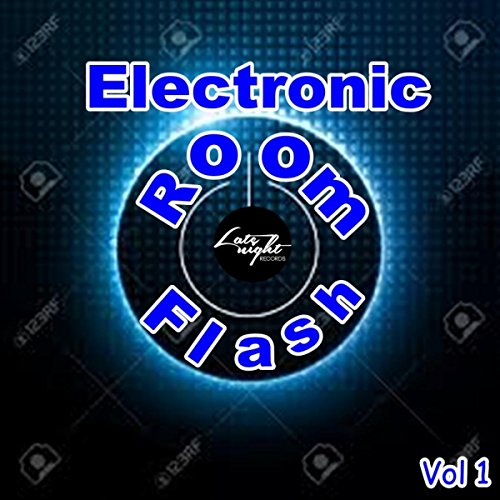 Electronic Room Flash, Vol. 1 [Explicit] (Electronic Flash)