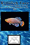Killifish Care: The Complete Guide to Caring for and Keeping Killifish as Pet Fish (Best Fish Care Practices)