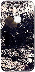 The Racoon Grip printed designer hard back mobile phone case cover for Google Pixel. (vintage lo)
