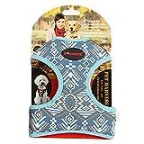 Dogmate Paisley Hundegeschirr Welpen Brustgeschirre Leinwand Katzen-Geschirr für Klein Hunde Atmungsaktiv Harness Bunt Verstellbare Haustier Vest mit Hundeleine Schleppleine Tierleine (M, blau)