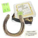 Geschenke mit Namen 1353 Echtes getragenes Glückshufeisen mit Widmung: alles Gute zum Einzug im neuen Heim inklusive Echtheitszertifikat und 2 echten Hufnägeln, Metall, gold, 17 x 17 x 4.5 cm