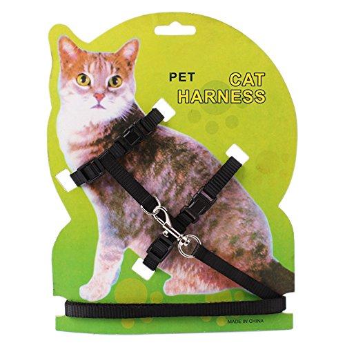 Harness und Nylon Leine für Tiere Einstellbare Pet Harness Traction Halfter von Bornbayb