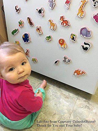 Imanes de nevera para niños de animales de granja – 29 espuma imanes para niños – juguetes educativos juguetes de aprendizaje para bebé – para 3 años