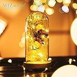 Note. Miz 1 Piece Glass Dome Led Lights Decoration Dried Flowers Vase Decoration Home Wooden Base Glass Vase