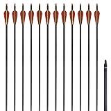 Festnight 12 Stücke Standard Recurvebogen-Pfeile Bogenpfeile 30 Zoll 0,8 cm Pfeilen aus Karbon
