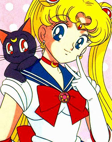 The best memes Sailor Moon - The Super Funny and Joke Book (English Edition)