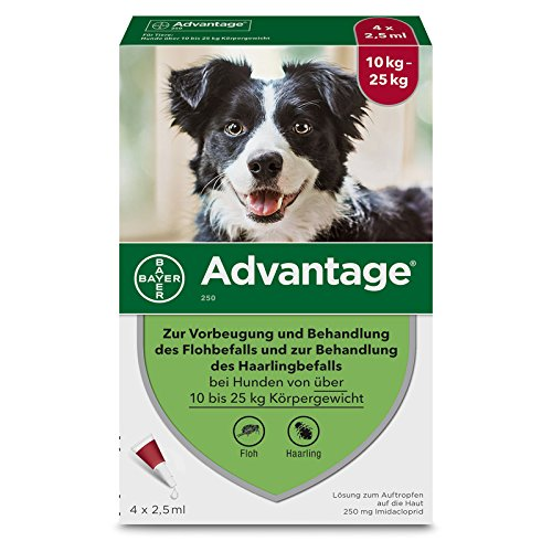 Bayer Vital GmbH Advantage 250 für Hunde L 4 STK
