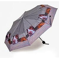 I Spy Spaniel Quality Mini Folding Umbrella (Handbag Size)