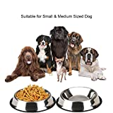#3: Pets Empire Stainless Steel Dog Bowls Pets Water Food Dishes Cats Feeding Utensils with Non-Slip Rubber Lip Perfect for Puppies and Medium Size Pets (set of 2)