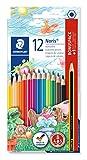 Staedtler Noris 144, Crayons de couleur de haute qualité extrêmement résistants, Étui carton avec 12 crayons différents assortis et 1 crayon à papier HB offert, 144 SET1