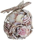 Homeshop3000 Conchiglie Decorative Miste in Rete Accesori Casa E Giardino