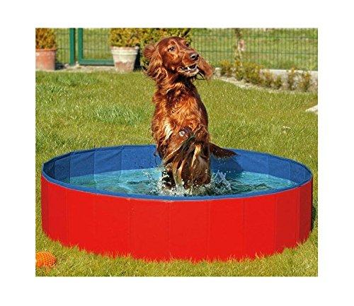 FurryFriends Piscina plegable para perro, bañera plegable para perro/gato – Spa plegable...