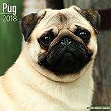 Kalender 2018 Mops - Pug - Carlin mit kWeihnachtskarte