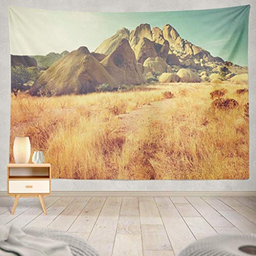Tapisserie Decor Collection, African Landscapes Africa Nature Road Hills Grass Environment Landscape Mountains Park Decorative Tapestry,50X60 Inches Wall Hanging Tapestry for Bedroom Living Room -