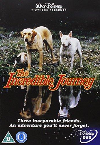 Incredible Journey [Edizione: Paesi Bassi] [ITA] [Edizione: Regno Unito]