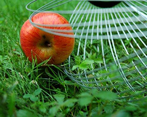 YERD Roll-In Apfel-Sammler