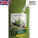 Perle Morbide 1 kg Alternative zum Keimen oder Einweichen von Samen für alle Vögel