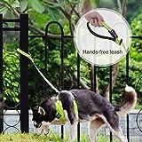 ThinkPet Einstellbare Hundeleine, Reflektierende Hundekette Keine Verwicklung Schwere Ausführung mit aufgefülltem Griff für Hundewelpen, EINWEG Verpackung