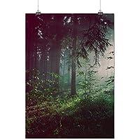 In profondità Buio foresta Nebbioso Opaco/Lucida Poster A0 (119cm x 84cm) | Wellcoda - Capo Pinnacolo