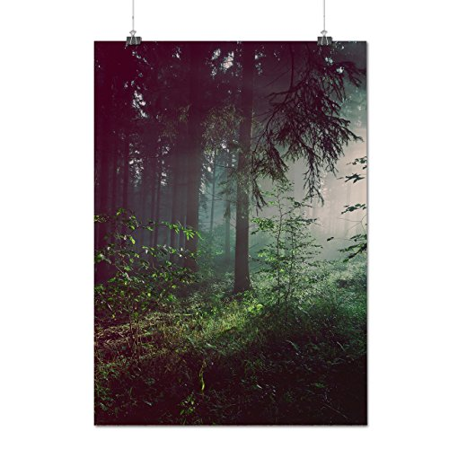 deep-dark-forest-foggy-nature-matte-glossy-poster-a2-60cm-x-42cm-wellcoda