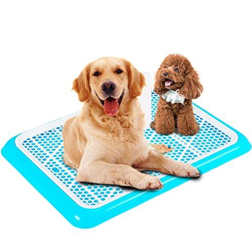 Animali servizi igienici Toilette per cani Grandi cani di grossa taglia Animali vasino-A piccolo