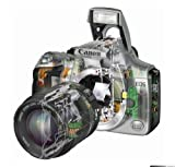 Canon EOS 300D Digital SLR Camera [6MP] - Body Only