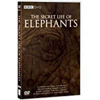 The Secret Life of Elephants