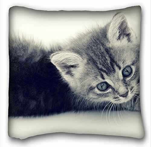 Sweet grape Square Throw Pillow Case Animals Fuzzy Baby Kittie Animal Animals cat Feline Kitten 18