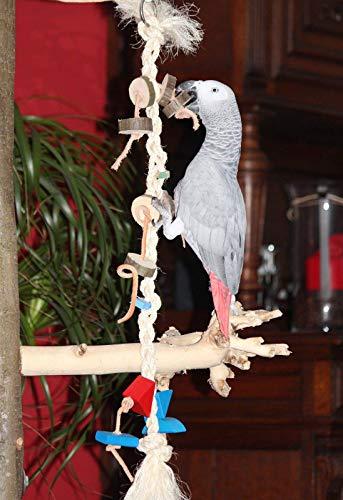 Papageienspielzeug Papageien Freisitz KLETTERSTRICK Naturholz SISALSEIL Sittiche KLETTERSEIL