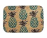 iLove EU Fußmatte, Sauberlaufmatte, Türmatte, Fußabtreter, Fußabstreifer Korallen Samt 40cm x 60cm - Mehrere Ananas (Gelb)