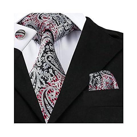 Hi-Tie Cravate ¨¦l¨¦gante pour hommes gris Paisley Woven