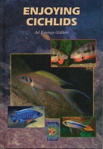 Enjoying Cichlids by Kjell Fohrman (2002-11-30)