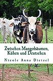 Zwischen Mangobäumen, Kühen und Deutschen: Perspektiven aus Paraguay - Nicole Anna Dietzel