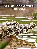 Gruseliges Getier Krokodile