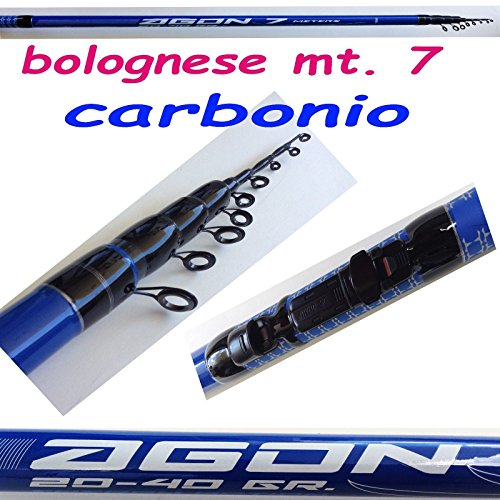 Canna bolognese in carbonio mt.7 pesca passata fiume mare lago galleggiante spigola carpa trota