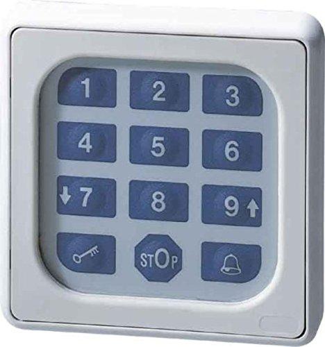 Somfy 9000028 Codetaster, Grau -