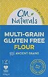 Dairy Free Plain All-Purpose Flour