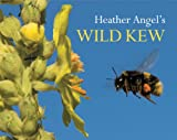 Heather Angel's Wild Kew