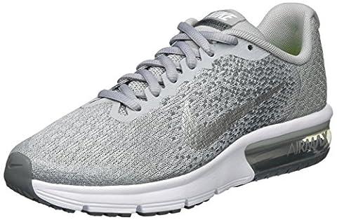 Nike Air Max Sequent 2, Chaussures de Running Fille, Gris (Wolf Grey/Metallic Silver/Cool Grey/Pure Platinum), 38.5 EU