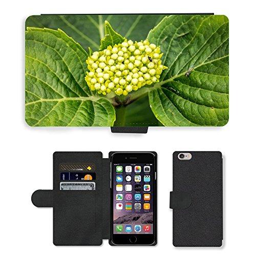 Just Mobile pour Hot Style Téléphone portable étui portefeuille en cuir PU avec fente pour carte/fleur/hortensia m00139637Young Frisch Vert//Apple iPhone 6Plus 14cm