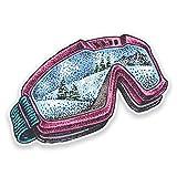 2x Snowboardbrille Vinyl Aufkleber
