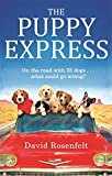 The Puppy Express: On the road with 25 rescue dogs . . . what could go wrong?