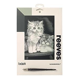 Reeves - Creatividad - Tarjeta de Raspar - Medio, plata - Gatitos