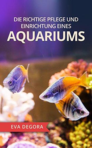 Die richtige Pflege und Einrichtung eines Aquariums