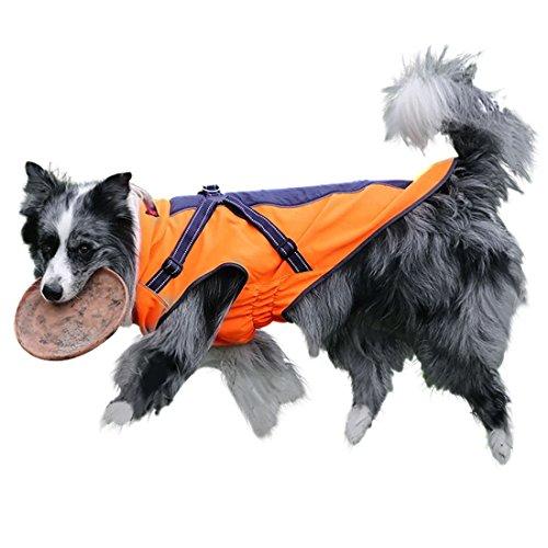 GWELL Hund Hundejacke Wasserdicht Fleece gefüttert Regenjacke Winterjacke Funktion Weste mit D-Ringe Gurt für Mittelgroßen Großen Hund Winter Herbst Orange&Schwarz L