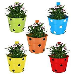TrustBasket Single Pot Railing Planter (Multicolour, Pack of 5)