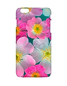 Crackndeal Back Cover for Apple Iphone 6s Plus