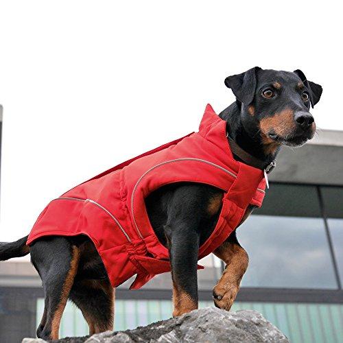 DogBite Hunde Softshelljacke Extrem flexibel im Hals-/ Brustbereich Winddicht wasserdicht atmungsaktiv hervorragende Wärmedämmung pflegeleicht Auch für Hundegeschirre geeignet